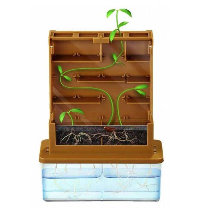 Образователен комплект Grow a Maze Растителен лабирит